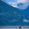 Quiet float on the Alsek River, Yukon / Alaska