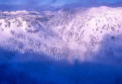 Specter of the Brocken in the Crystal backcountry, Cascades, Washington
