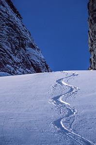 Tracks, Adamant Range, British Columbia