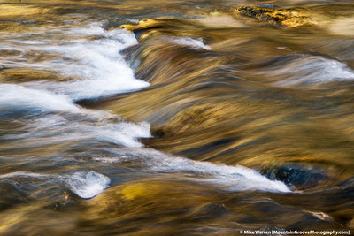 Light reflecting from yellow cottonwood trees upon Virgin River, Zion National Park, UT.  Series of 3.