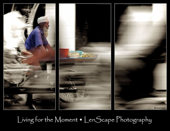 Triptych Ref #7556-N Photo © LenScape Photography