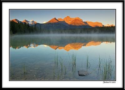 Ref #7506-1N photo © LenScape Photography