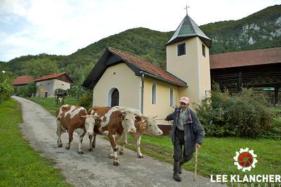 Hrastnik, Slovenia Farmer