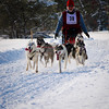 Kalkaska Dog Sled