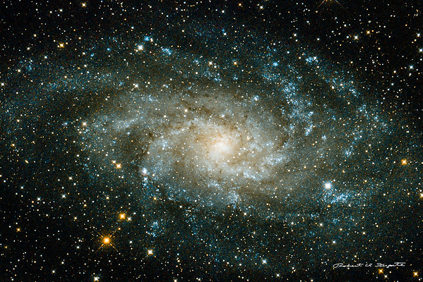 A 10 hour 34 minute integration of M33 from the backyard. Cropped from the previous photo.