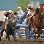 Rodeo Favs 076