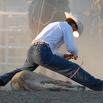 Rodeo Favs 023