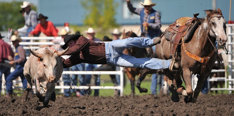 Rodeo Favs 069