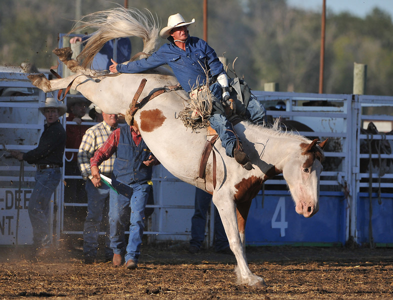 Rodeo Favs 039