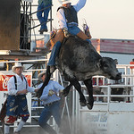 Rodeo Favs 024
