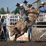 Rodeo Favs 072