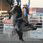 Rodeo Favs 025