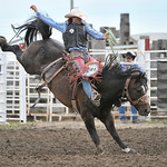 Rodeo Favs 085