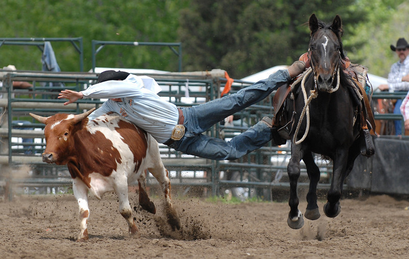 Rodeo Favs 050