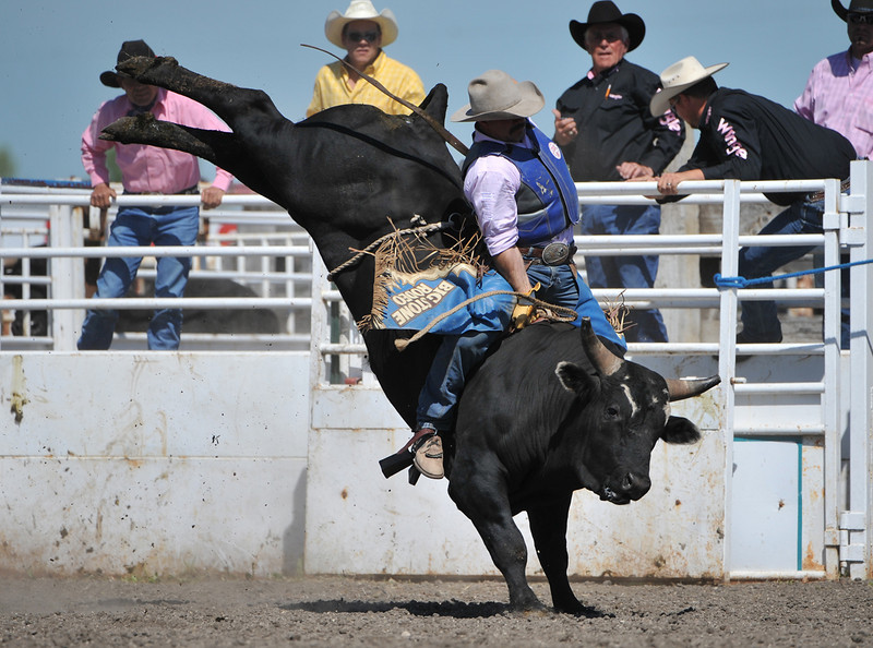 Rodeo Favs 065
