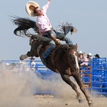 Rodeo Favs 064