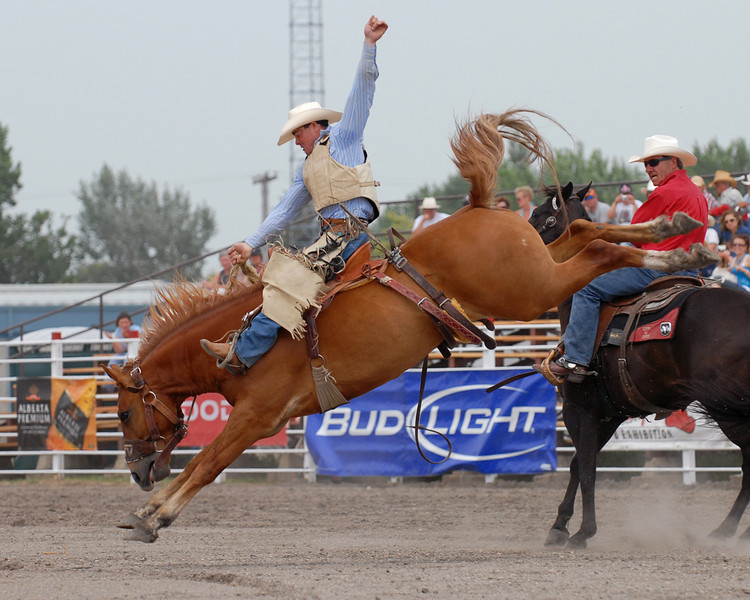 Rodeo Favs 028