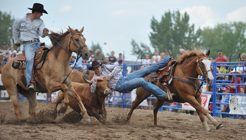 Rodeo Favs 060