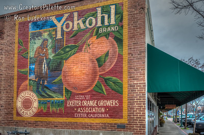 One of many Murals in Exeter, CA