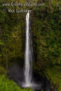 Akaka Falls; Akaka Falls State Park; Big Island; Hawaii