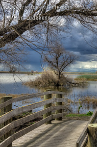 Gathering Storm - Merced National Wildlife Refuge