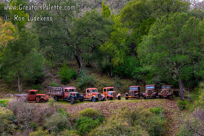 Photogenic collection of old trucks along Highway 41 near Atascadero, CA