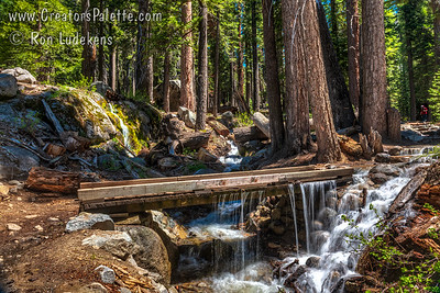 Streams sharing trail to Tokopah Falls - Sequoia National Park