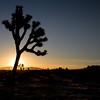 Sun Rising Over Saddleback Butte