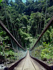 Suspension bridge over Wainisairi River, Lavena coastal walk, Taveuni, Fiji