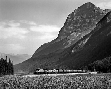 September 5, 1988.  With Mount Stephen towering in the background, a CP grain train departs the west end of the Field yard.