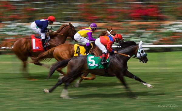 Del Mar horse race