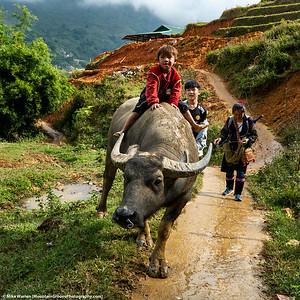 Sa Pa, Vietnam.