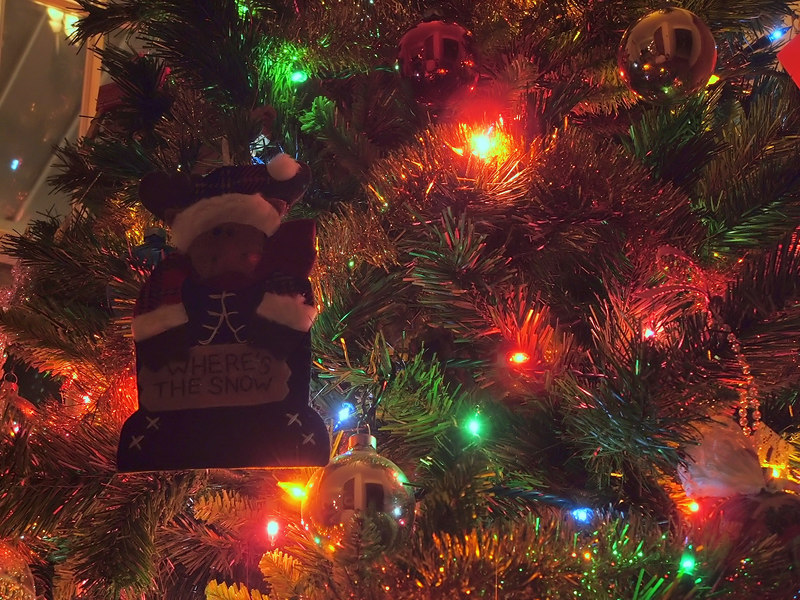 Where's the snow? That's how I felt Chirstmas 2006 and this photo helped express that feeling. Ah, more of the warm glow of Christmastime. :)