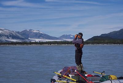 Bear spotting on the Alsek River, Alaska