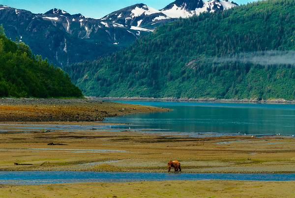 Salmon fishing in Glacier Bay, Alaska