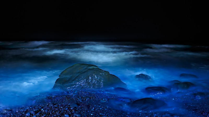 Night Visions of Pacific Ocean Blue