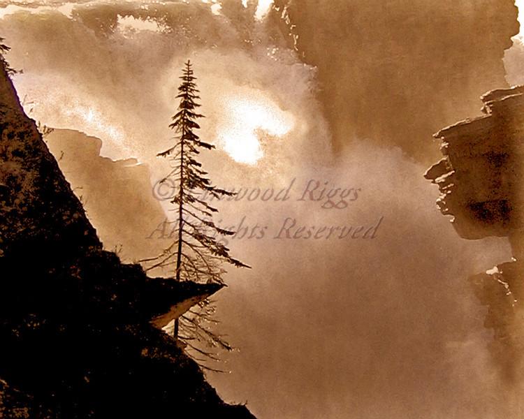 Athabaska Falls, Alberta
