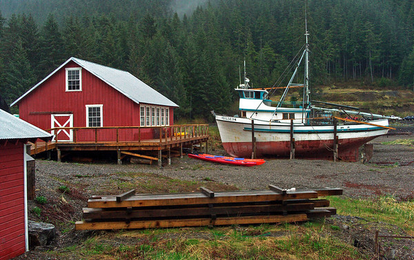 Boat landing at Icy Strait, Alaska,0075