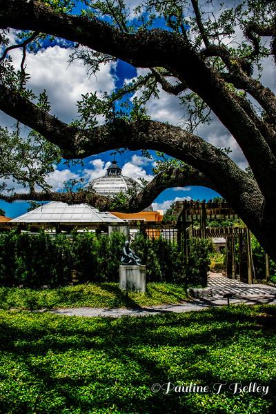 DSC_0345 Dome in Oaks