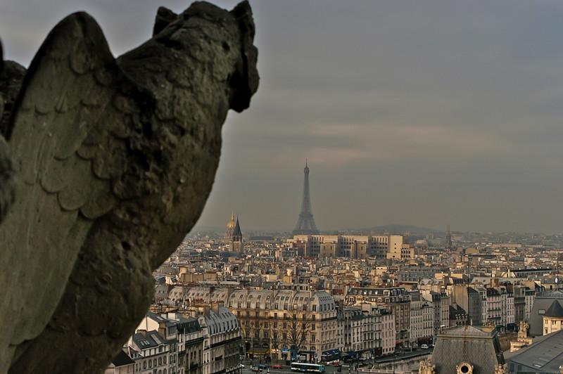 Notre Dame Winged Gargoyle