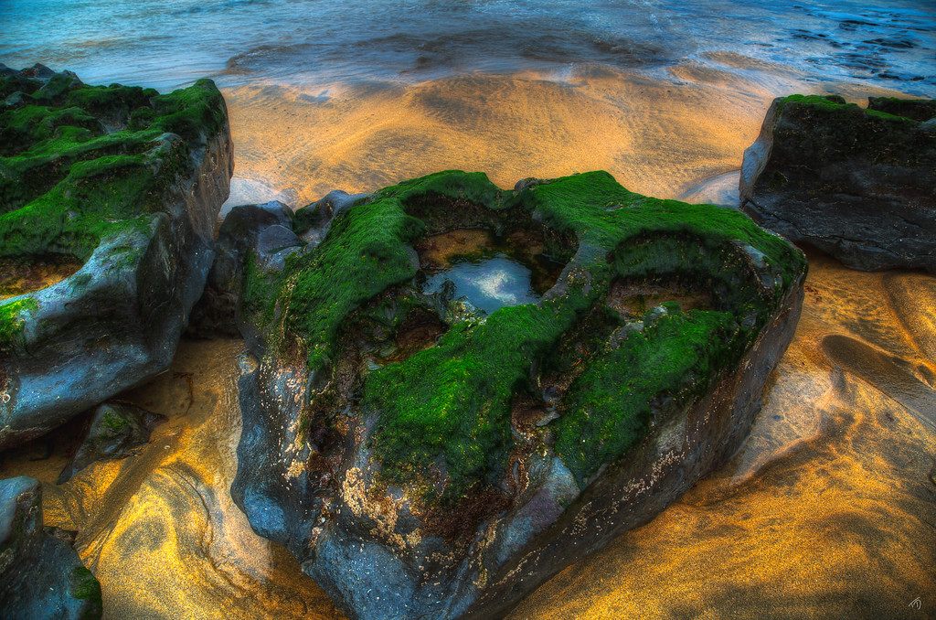 Mossy Rocks, Southwest Coast of Ireland