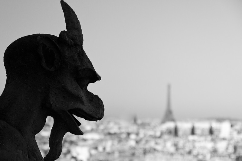 From high atop Notre Dame, gargoyles have a permanent view of the city.