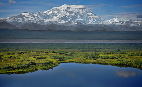 View of Mount McKinley's North Face, looking south toward Wonder Lake and the McKinley River, #0469