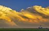 Convectional Prairie Waves