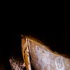 Cave pictographs, Fremont, Nine Mile Canyon, Utah