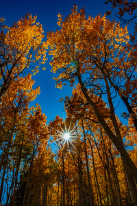 Magic Rays, Monarch, CO