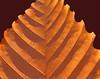 Beech leaf (stylized)