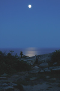 Moonrise on Cadillac Mountain