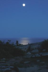 Moonrise on Cadillac Mountain