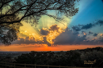 Sunset @ The Shady Llama
